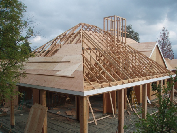 Roofing plywood bad roof plywood for What to use for roof sheathing