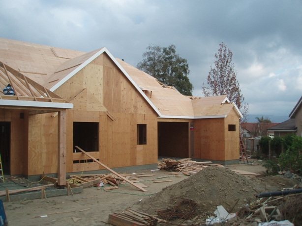 Plywood Roof Sheathing 03